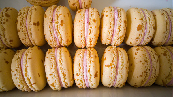 Ollaliberry macarons at Ginger Elizabeth Chocolates   One Day in Sacramento