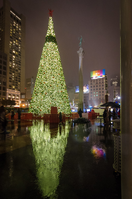 The Union Square Christmas tree, reflections in the rain.