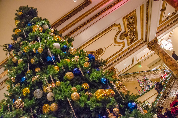 Christmas trees at Fairmont San Francisco