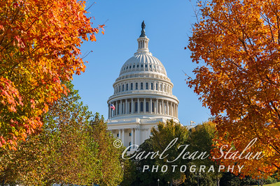 Fall Colors at the Capitol