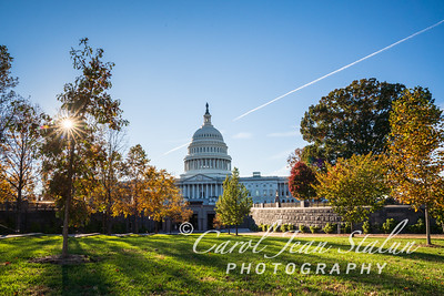 Fall Colors at the Capitol 3
