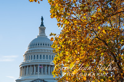 Fall Colors at the Capitol 2