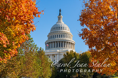 Fall Colors at the Capitol 1