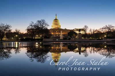 Holiday Reflections at the Capitol