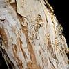 Malibu Christels Views-0375