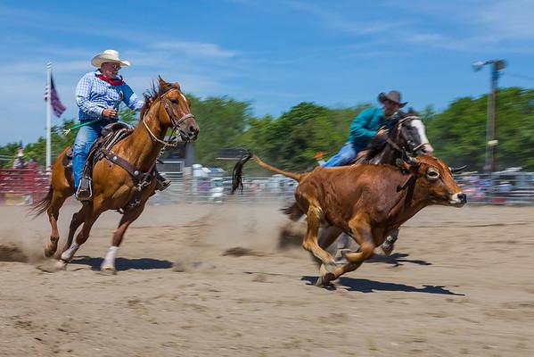 2017 Montgomery Rodeo