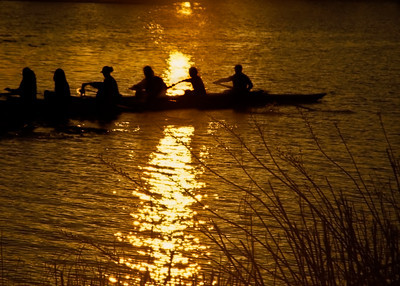 Rowing Team On The Charles River, Boston MA