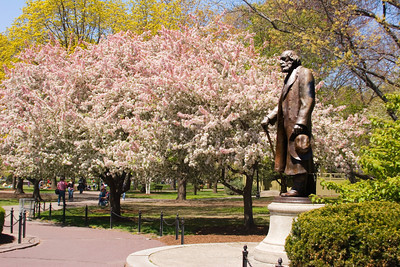 Edward Everett Hale Statue, Boston Public Garden