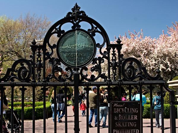 Entrance Gate to Boston Public Garden