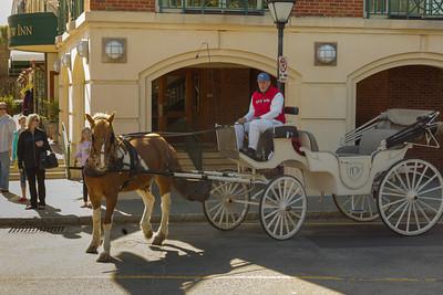 Horse Drawn Carriage, French Quarter, Charleston, South Carolina