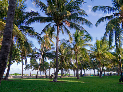 Lummus Park, South Miami Beach, Florida