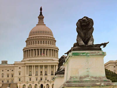 Lion Statue in front of US Capitol Building