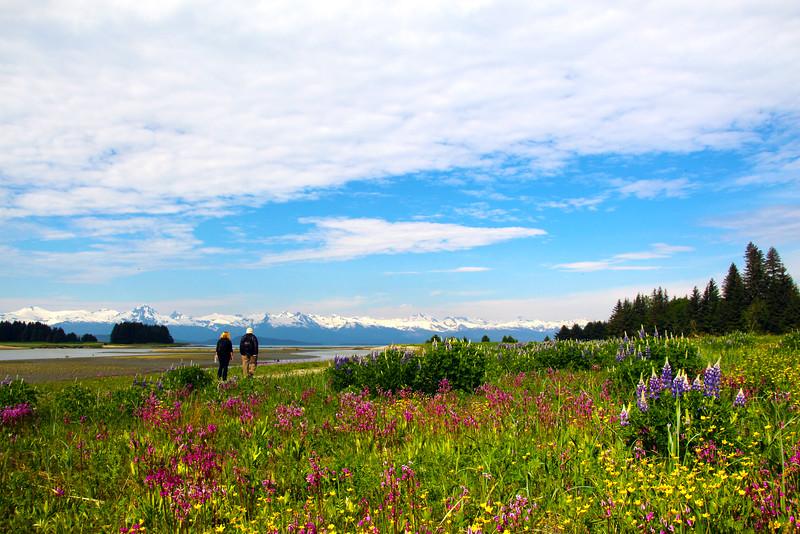 Juneau Alaska, Chitkat Mountain Range