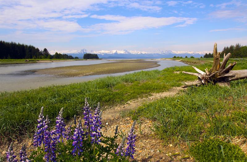 Juneau Alaska, View on Chilkat Mountain Range, Eagle River
