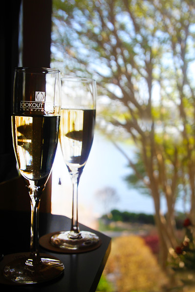 Hot Springs Arkansas, Champagne Toast, Lookout Point Lakeside Inn