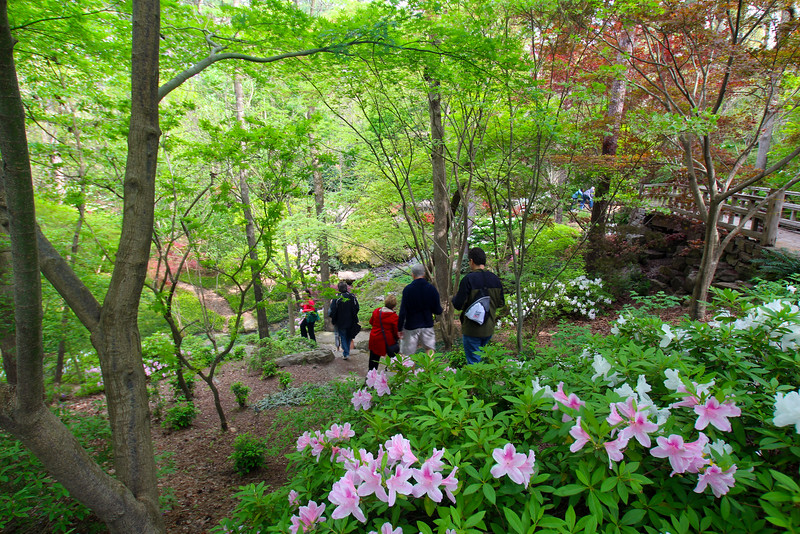 Hot Springs Arkansas, Garvan Woodland Gardens, Hiking Through the Trail
