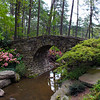 Hot Springs Arkansas, Garvan Woodland Gardens, Picturesque Bridge