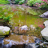Hot Springs Arkansas, Garvan Woodland Gardens, Reflections in Pond