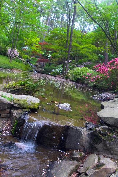 Hot Springs Arkansas, Garvan Woodland Gardens, Bubbling Creek