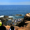 Acadia National Park, Thunder Hole