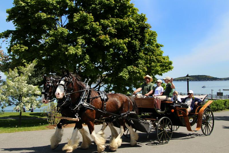 Bar Harbor Maine, Carriage Ride
