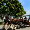 Bar Harbor Maine, Carriage Ride