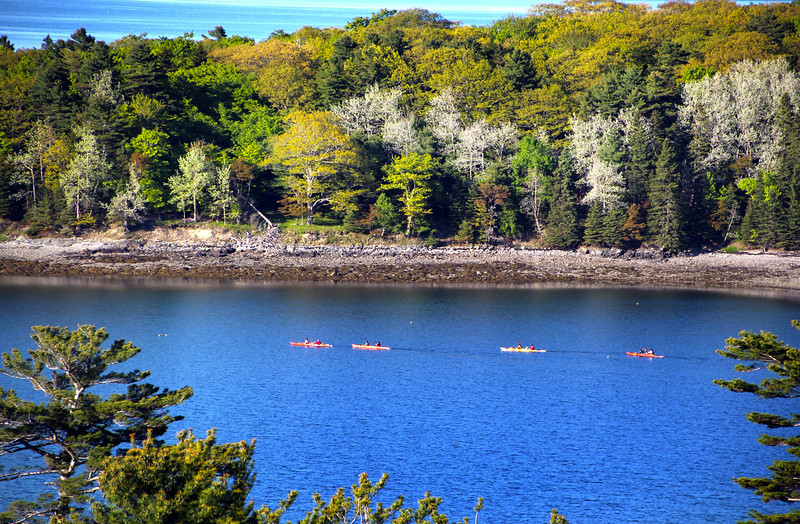 Bar Harbor Maine, Kayakers