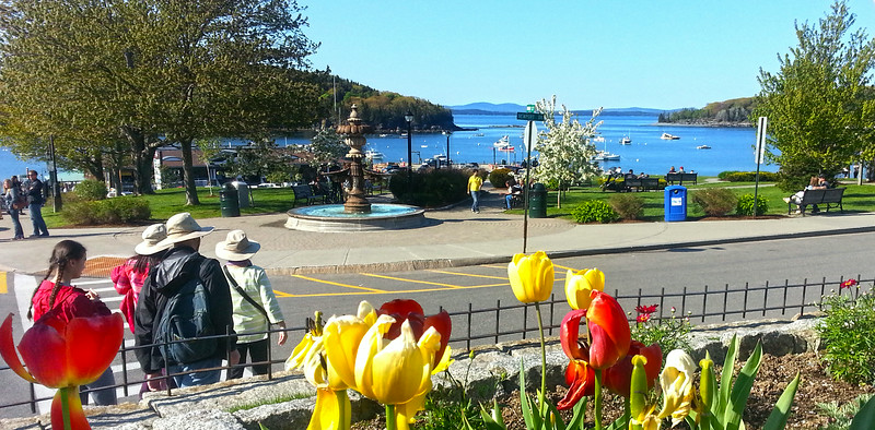 Bar Harbor Maine, Families Enjoying Village Green