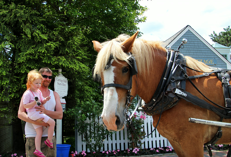 Kennebunkport Maine, Child and Carriage Horse