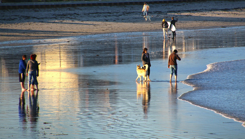 Kennebunk Maine, Dogs, Surfers, Walkers on Beach at Dusk