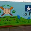 Brenham-Washington County Texas, Mural Panorama
