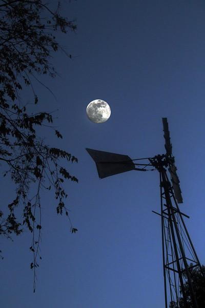 Fredericksburg Texas, Hoffman House, Windmill at Dusk