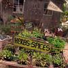 Fredericksburg Texas, Fredericksburg Herb Farm, Herb Garden