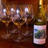Fredericksburg Texas, Becker Winery, Viognier