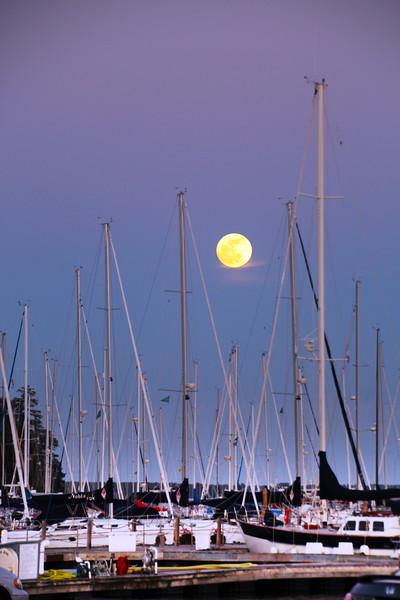 Bayfield Wisconsin, Harvest Moon