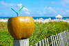 Miami South Beach 2 straws coconut Florida
