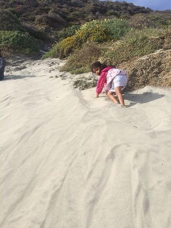 Bigsur and Pfeiffer Beach