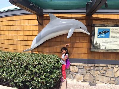 Sea World@San Diego