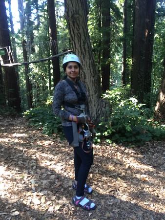 Ziplining Redwoods Canopy Tour