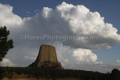 Devils Tower NM-2115