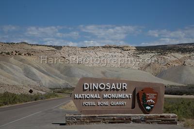 Dinosaur NM-2980
