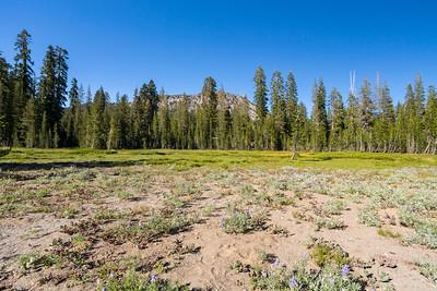 Kings Creek. Lassen Volcanic National Park - California, USA