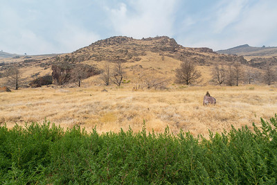 Lava Beds National Monument - Tulelake, CA, USA