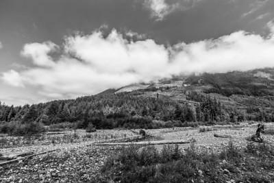Carbon River. Mount Rainier National Park - Washington, USA