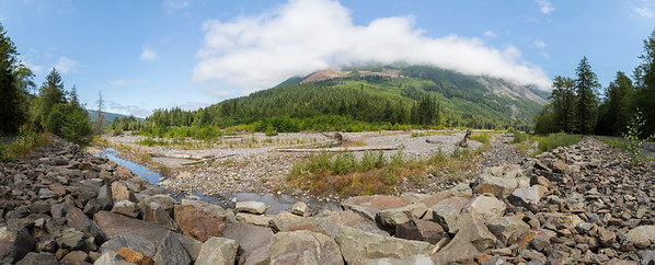 Panorama. Carbon River. Mount Rainier National Park - Washington, USA