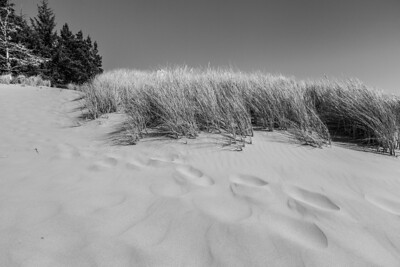 Gardiner, OR, USA (Oregon Dunes National Recreation Area)