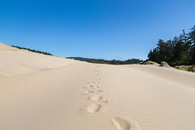 Gardiner, OR, USA (Oregon Dunes National Recreation Area)