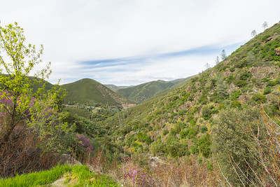 Midpines, CA, USA - Route to Yosemite National Park