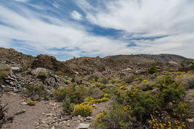 Crater (foreground) & Crater Mountain (in the distance). Panum Crater. Mono-Inyo Craters. Inyo National Forest, CA, USA