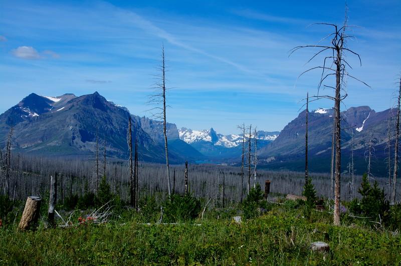 67 -Mount Jackson befhind Forest Fire Remnants